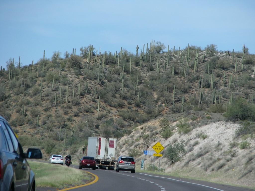 מאריזונה לניו מקסיקו