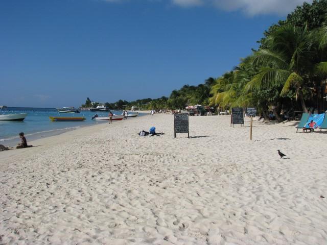 קרוז לאיים הקריביים - על החוף ברואטן, הונדורס