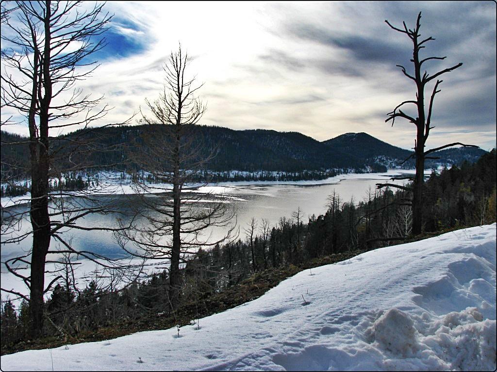 יוטה: שלג בדרך מברייס קניון לסיידר סיטי
