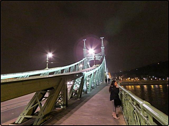 Budapest - Liberty Bridge at night | גשר החרות