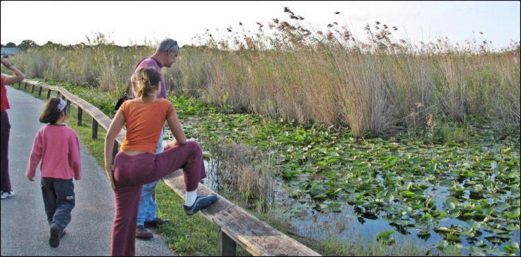 Everglades NP Florida | הפארק הלאומי אברגליידס