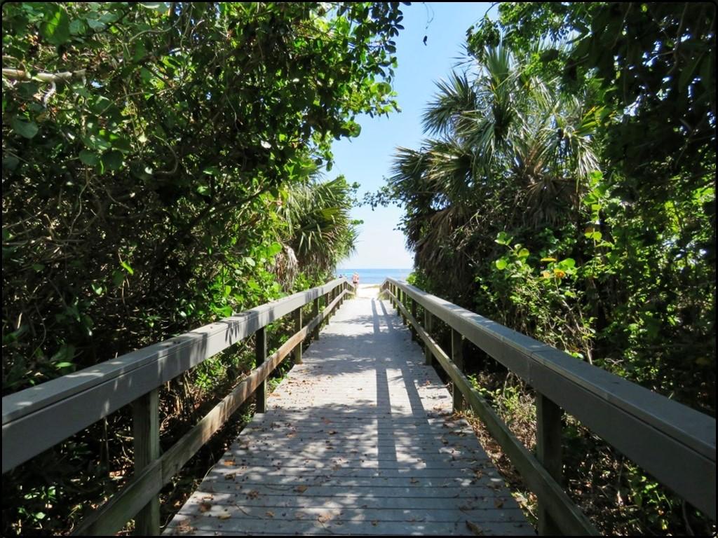 פלורידה - סניבל בדרך אל הים