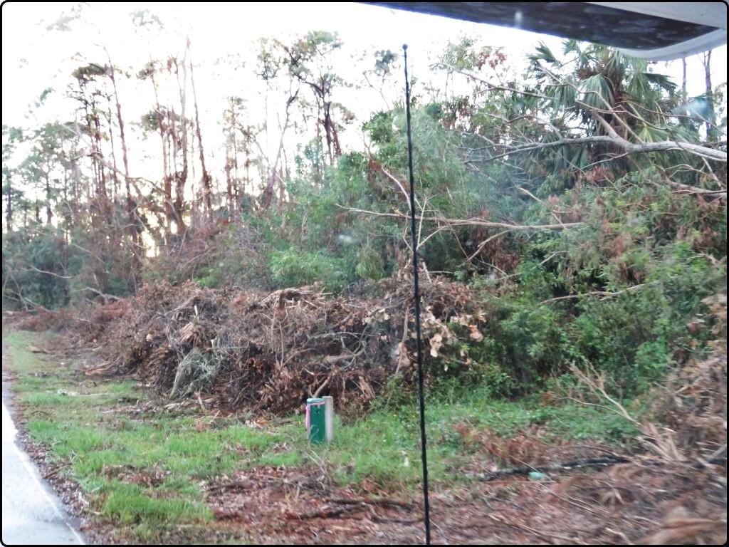 פלורידה - Tamiami Trail הנזקים של אירמה