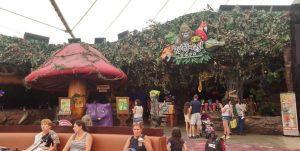 סוגראס- Rain Forest Cafe למצגת