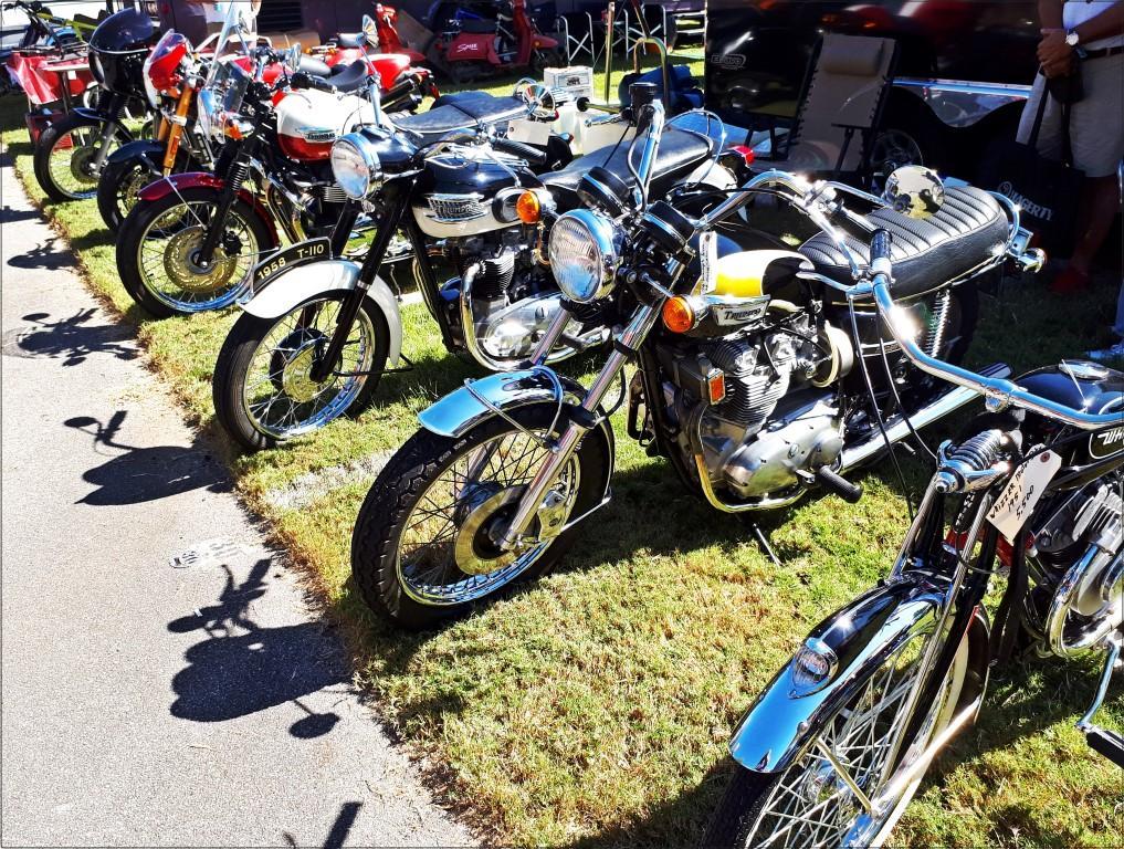 אופנועים, אופנועים בכל מקום - פסטיבל האופנועים באלבמה