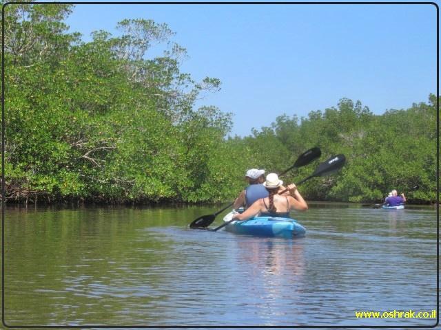 שייט קייאקים באי סניבל, פלורידה