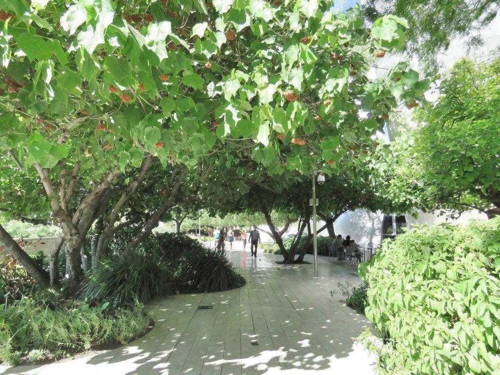 אושרה קמחי על המזוודות - מסלול טיול דאון טאון לוס אנג'לס - Blue Ribbon Garden